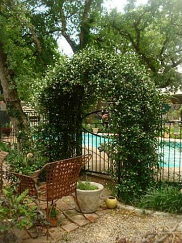Sold Property | 1204 W Cedar Street Arlington, Texas 76012 11