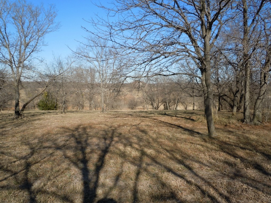 Sold Property | 907 Mallard Pointe Drive Grand Prairie, Texas 75104 1