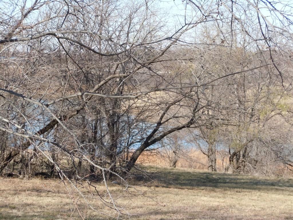Sold Property | 907 Mallard Pointe Drive Grand Prairie, Texas 75104 3