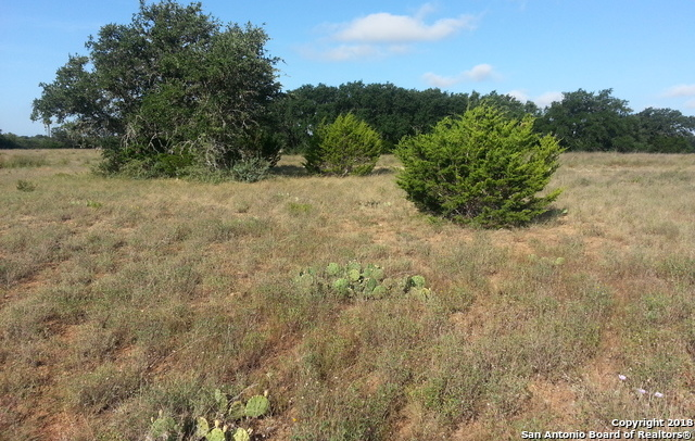 Rockin J Ranch Residential Golf Lot in Texas Hill Country | LOT 831 S Otto Lange  Blanco, TX 78606 8