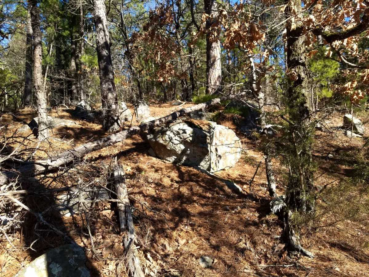 large hunting, hunting land, pond creek, trails, wooded property | Indian Hwy Albion, OK 74571 8