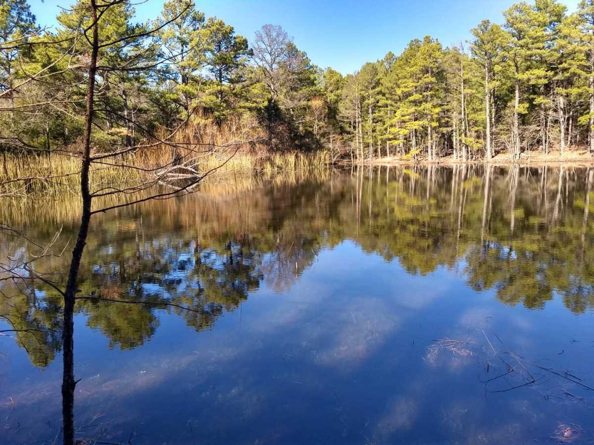 land, ranch, recreational, hunting, oklahoma, cabin | Indian Hwy Albion, OK 74571 2