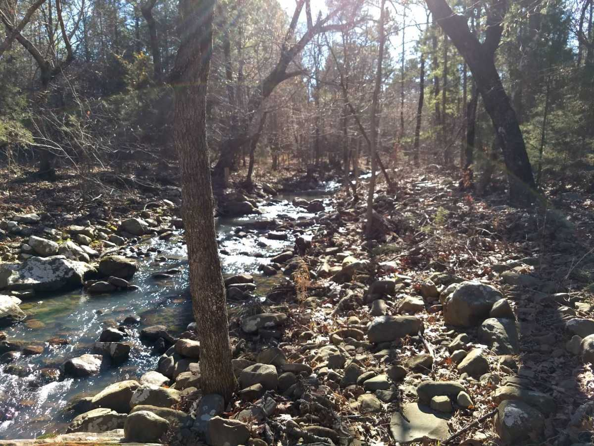 large hunting, hunting land, pond creek, trails, wooded property | Indian Hwy Albion, OK 74571 10