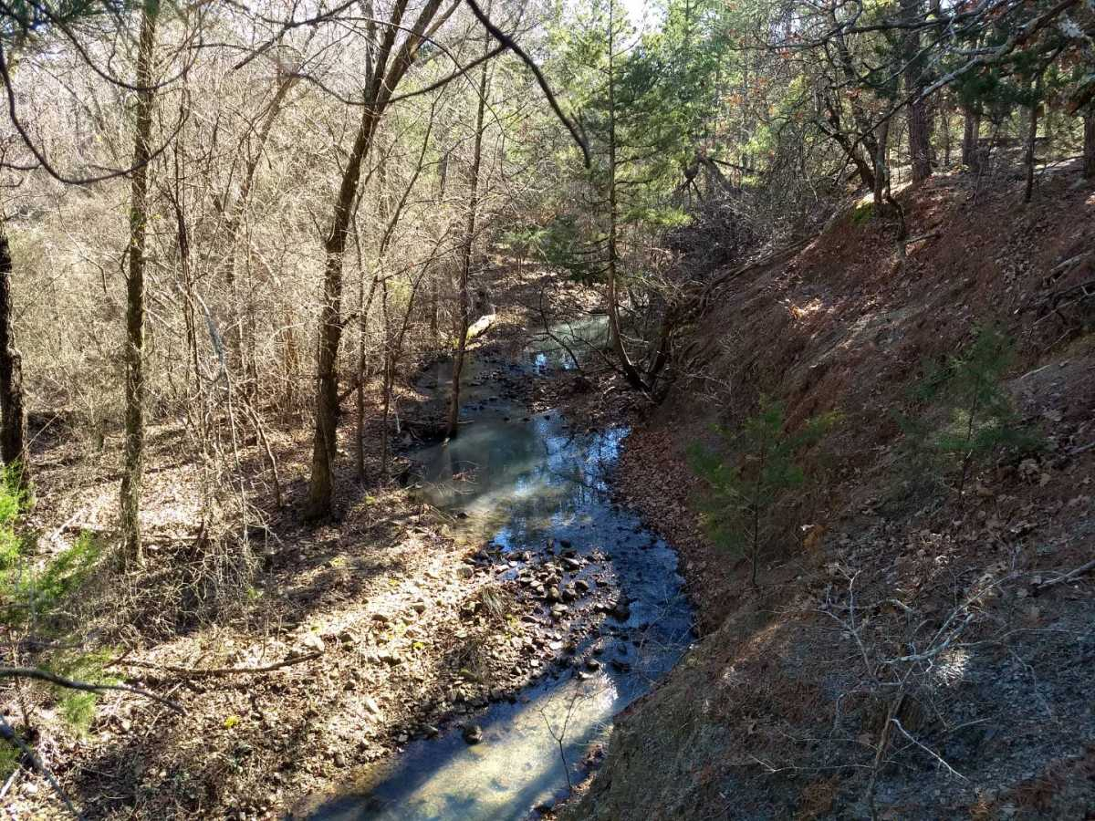 land, ranch, recreational, hunting, oklahoma, cabin | Indian Hwy Albion, OK 74571 11