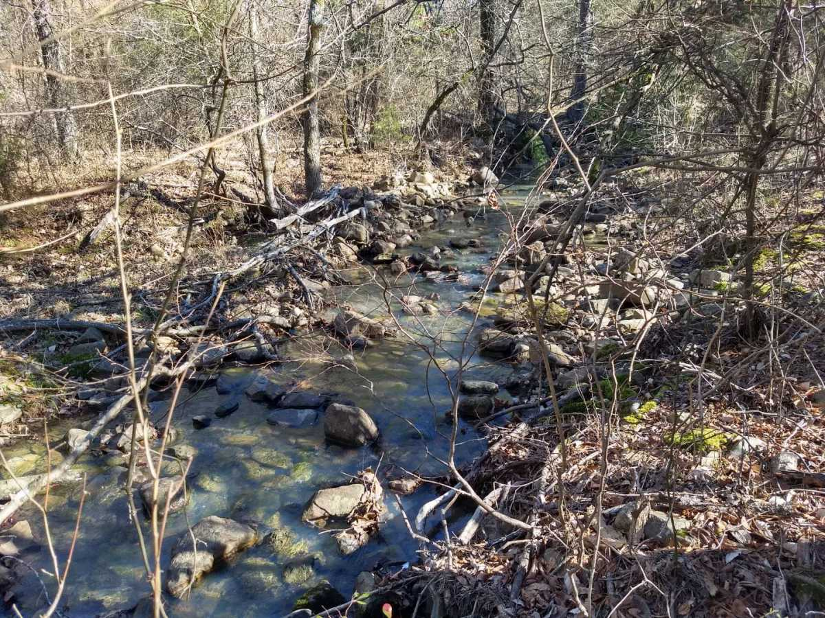 land, ranch, recreational, hunting, oklahoma, cabin | Indian Hwy Albion, OK 74571 12