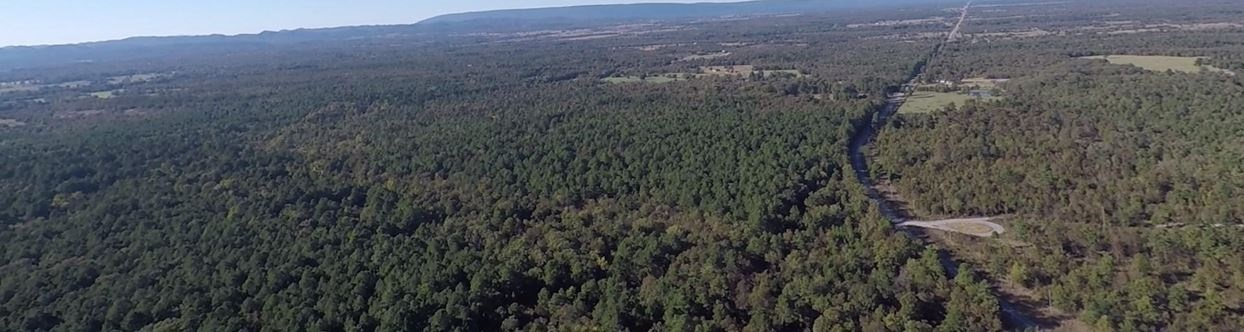 large hunting, hunting land, pond creek, trails, wooded property | Indian Hwy Albion, OK 74571 7