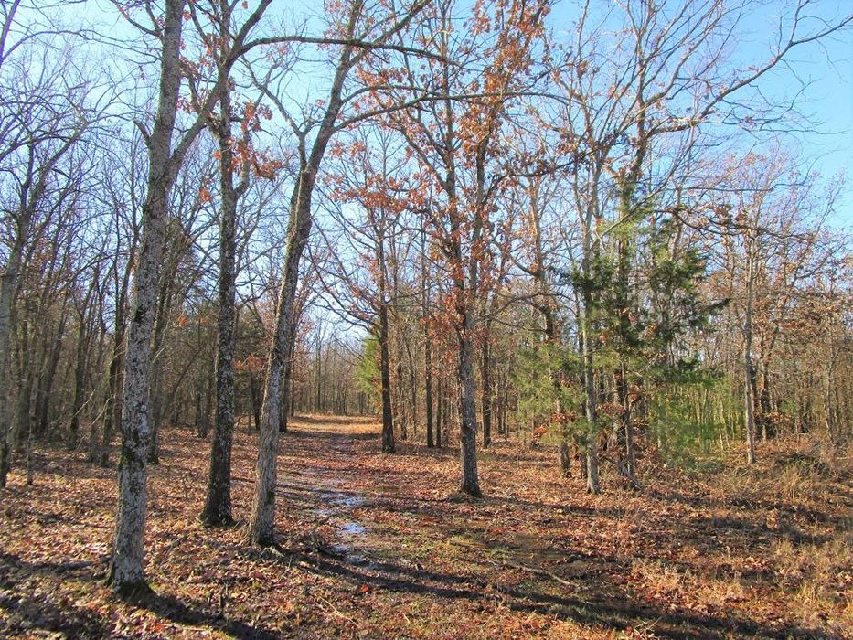 hunting lodge, hunt land deer food trails utilities pond game  | Oklahoma Hill Country Gerty, OK  0