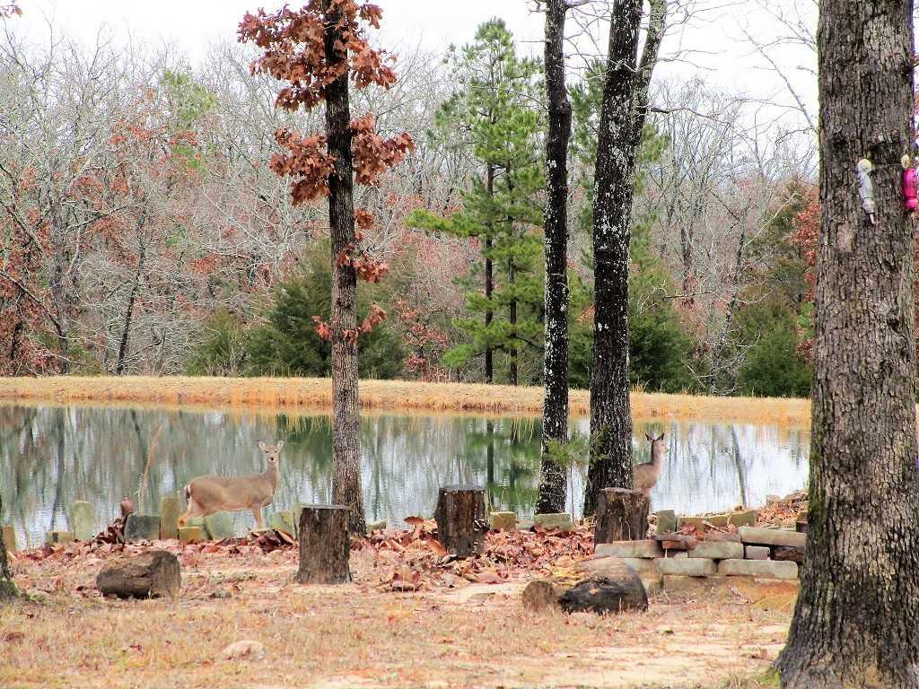 air B & B country, hunting lodge, water front cabin, cabin, fish | Hwy 271 Divide, Oklahoma, Oklahoma 74567 60