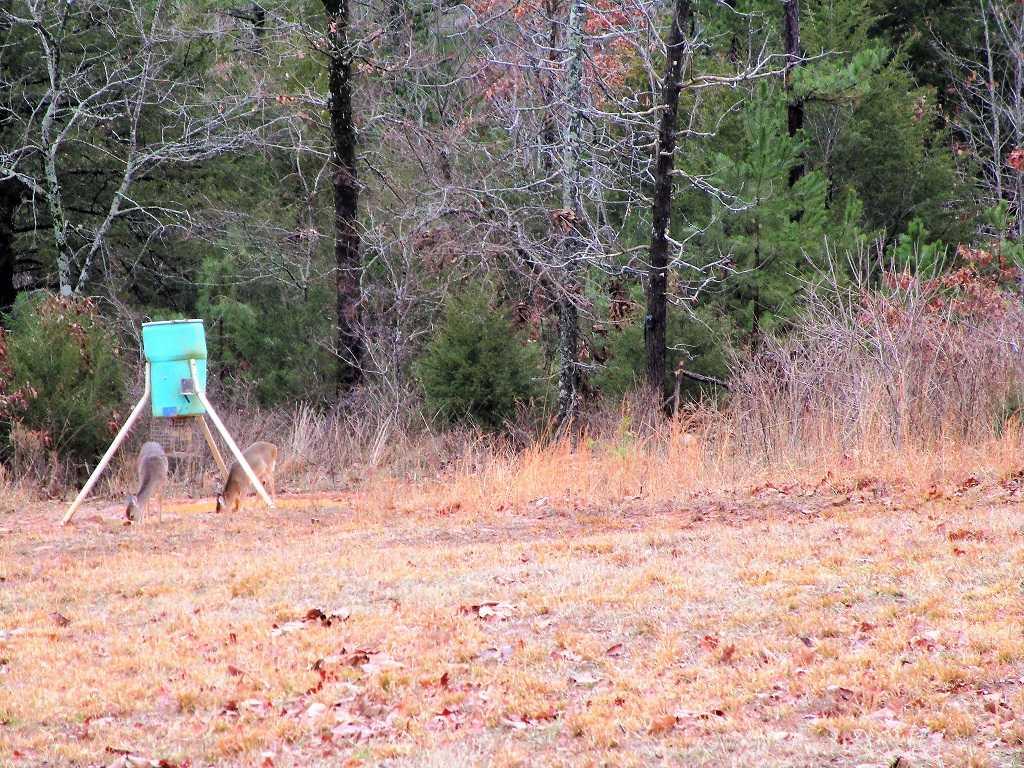 air B & B country, hunting lodge, water front cabin, cabin, fish | Hwy 271 Divide, Oklahoma, Oklahoma 74567 63