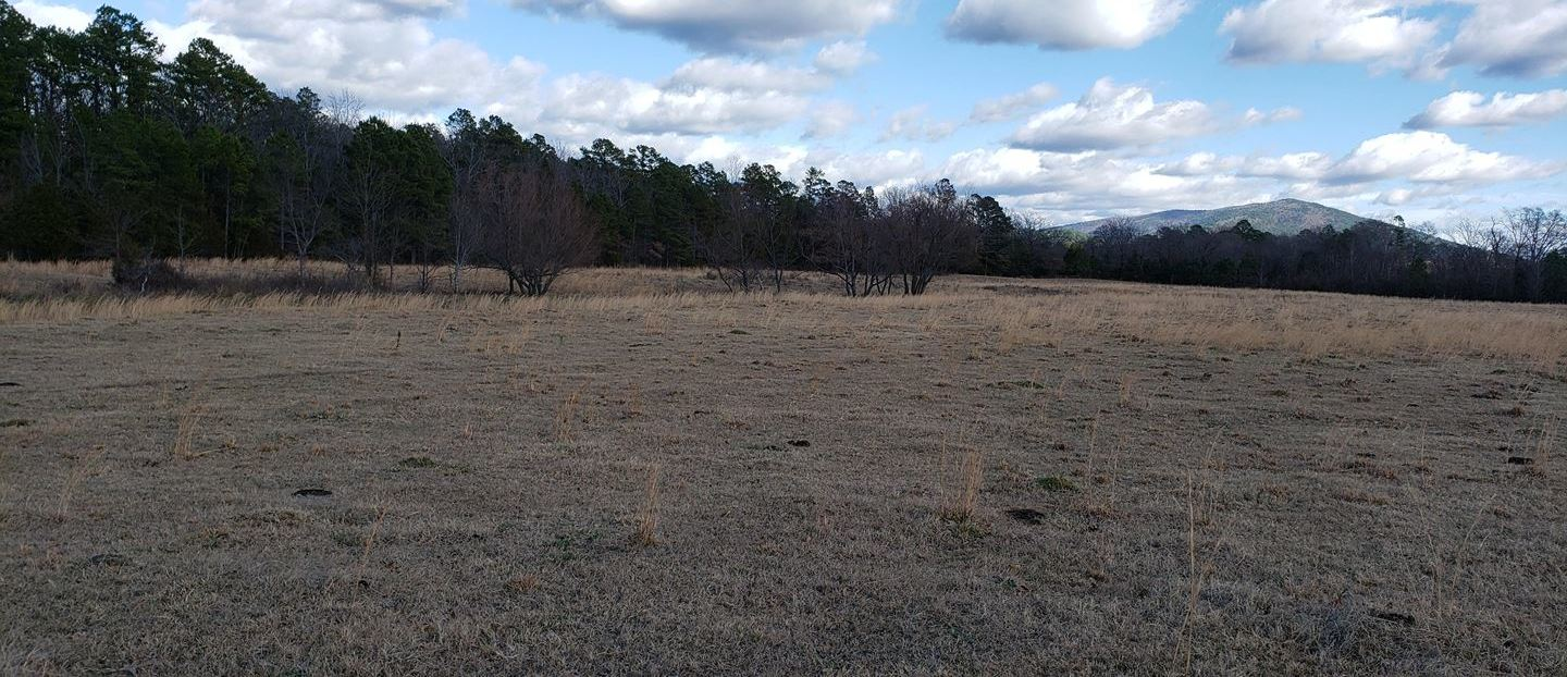 Kiamichi River land, mountain view land, land utilities w/river, | 170 AC w/KIAMICHI RIVER AT SE CORNER Muse, OK 74949 0