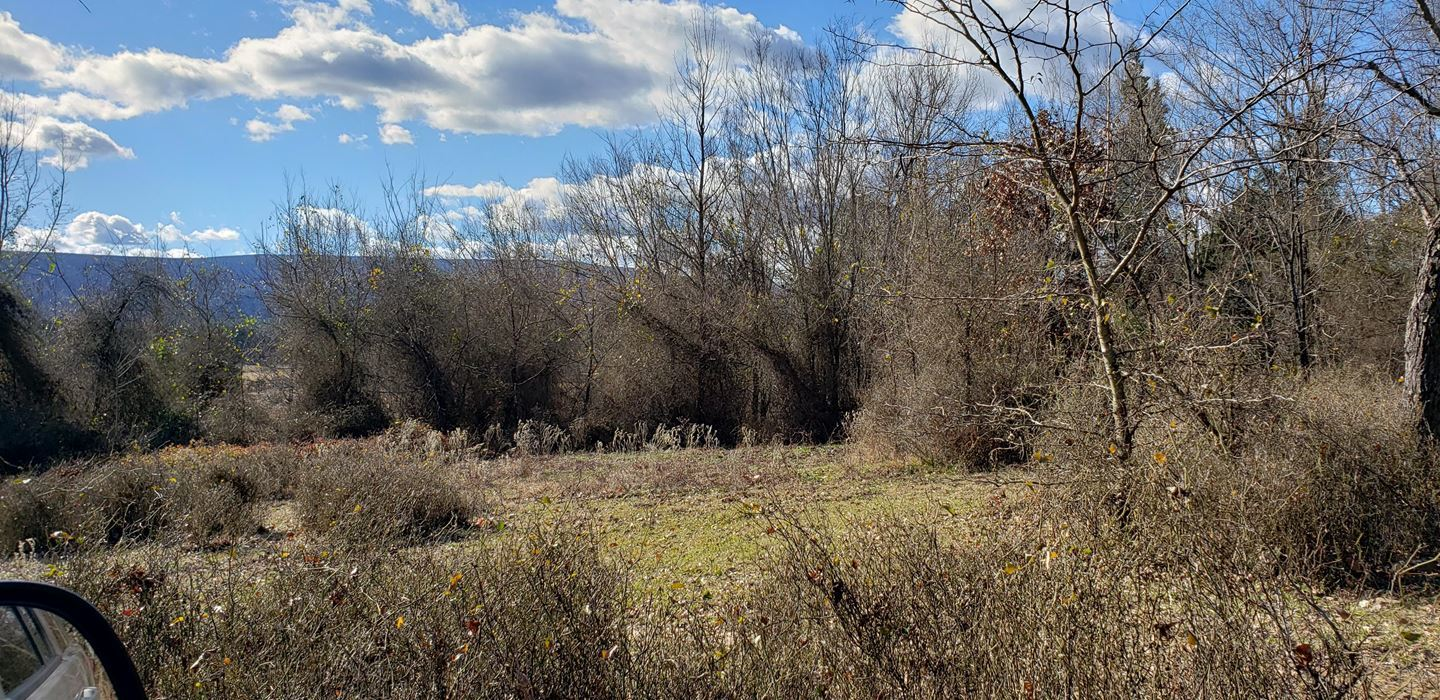 Kiamichi River land, mountain view land, land utilities w/river, | 170 AC w/KIAMICHI RIVER AT SE CORNER Muse, OK 74949 10