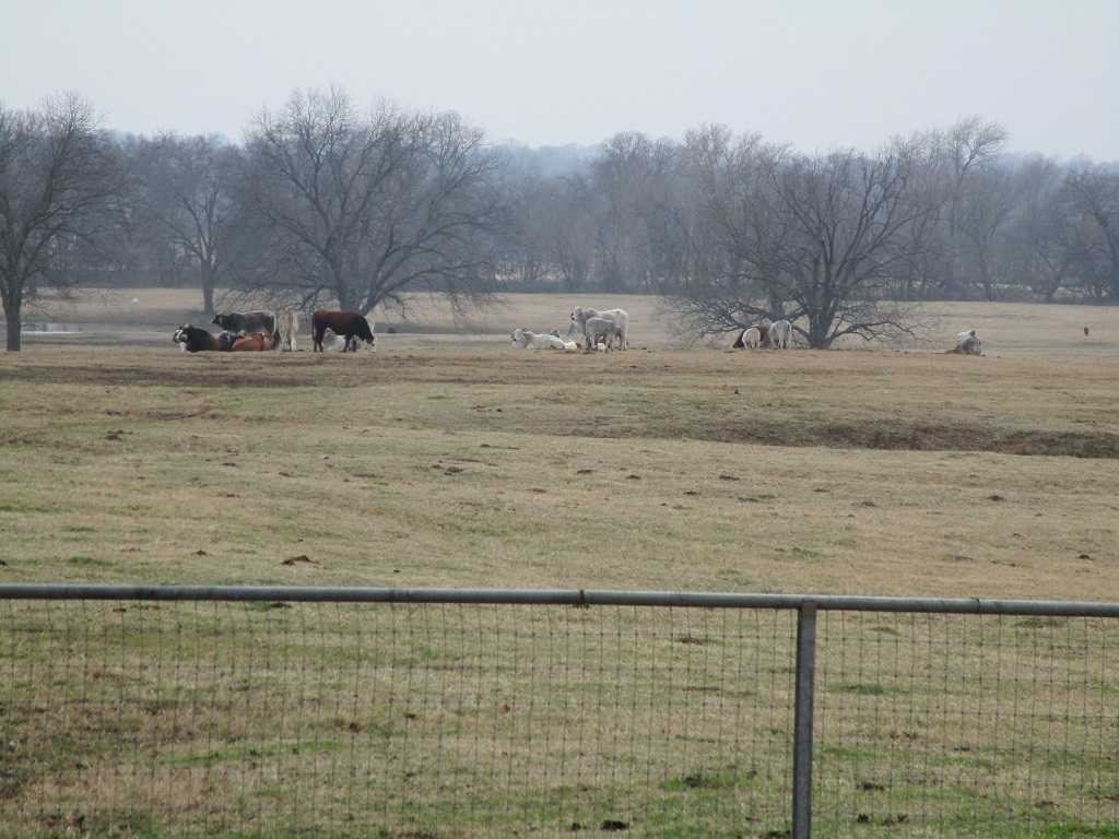 Blue River property, home acreage pond, cattle ranch river SE OK | 490 Rock Creek Road Bokchito, OK 74726 49