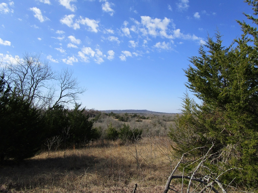 Active | Choctaw Ridge Deer Camp - 129 Acres Boswell, OK 74727 0