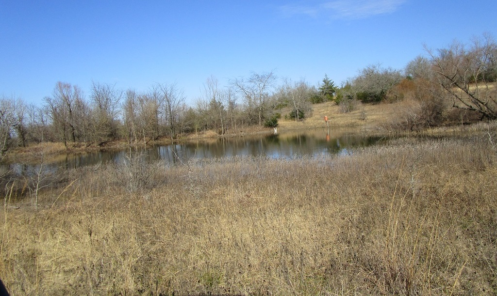 Active | Choctaw Ridge Deer Camp - 129 Acres Boswell, OK 74727 1