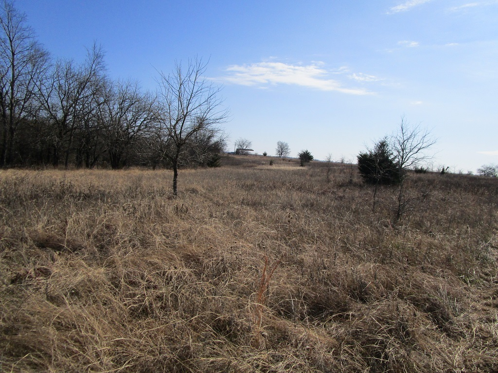Active | Choctaw Ridge Deer Camp - 129 Acres Boswell, OK 74727 7