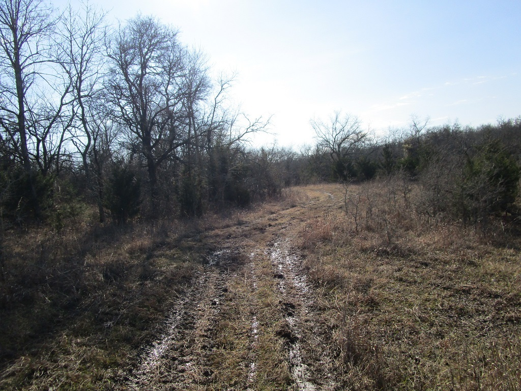 Active | Choctaw Ridge Deer Camp - 129 Acres Boswell, OK 74727 9