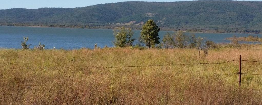 Active | 29 Acres Peninsula On Sardis Lake Clayton, OK 74536 2