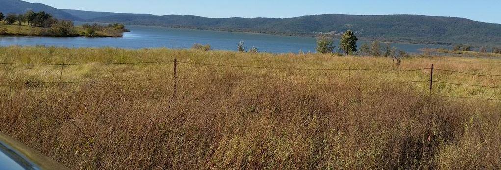 Active | 29 Acres Peninsula On Sardis Lake Clayton, OK 74536 6