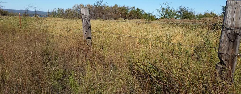 Active | 29 Acres Peninsula On Sardis Lake Clayton, OK 74536 9