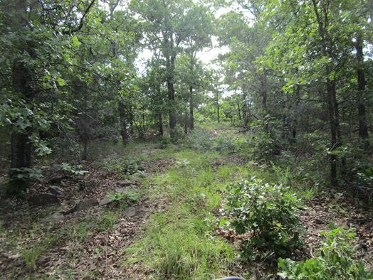 Active | Waterfront Property With Eufaula Lake Access - 87.71 Frontage Acres Eufaula, OK 74432 4