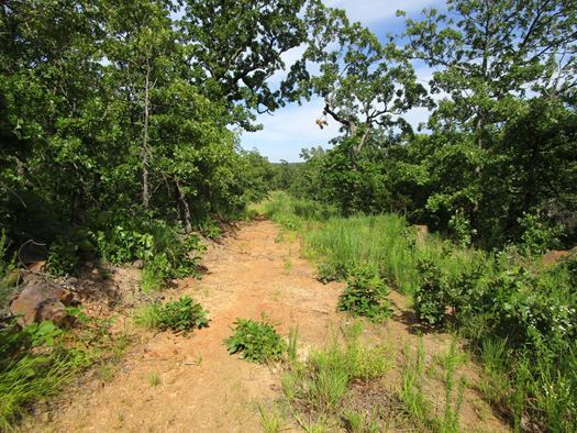Active | Waterfront Property With Eufaula Lake Access - 87.71 Frontage Acres Eufaula, OK 74432 8