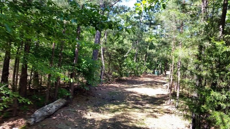 Active | Cabin In The Woods Talihina, OK 74571 3