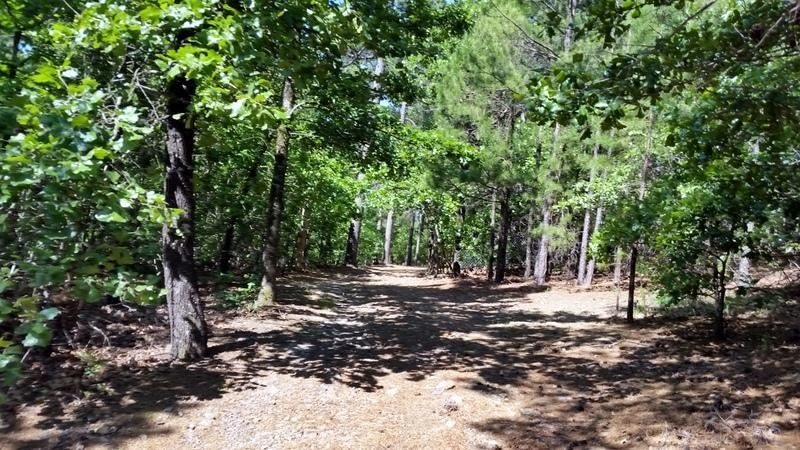 Active | Cabin In The Woods Talihina, OK 74571 5