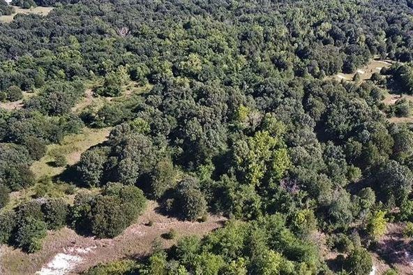 Wooded 33 Acre Ranch for Sale near Durant, OK | 9450 S Eli Road Coleman, OK 73432 2