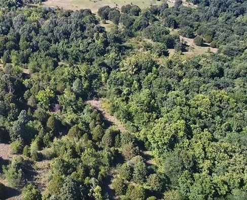 Wooded 33 Acre Ranch for Sale near Durant, OK | 9450 S Eli Road Coleman, OK 73432 3