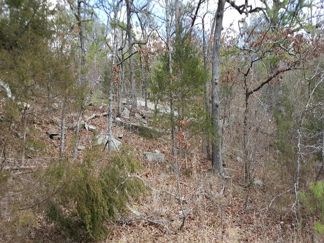 Sold Property | New Price - $995 Per Acre Red Oak, OK 74563 4