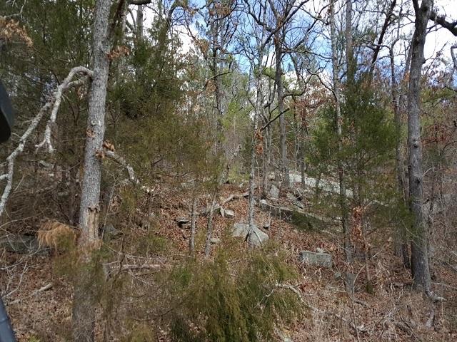Sold Property | New Price - $995 Per Acre Red Oak, OK 74563 5