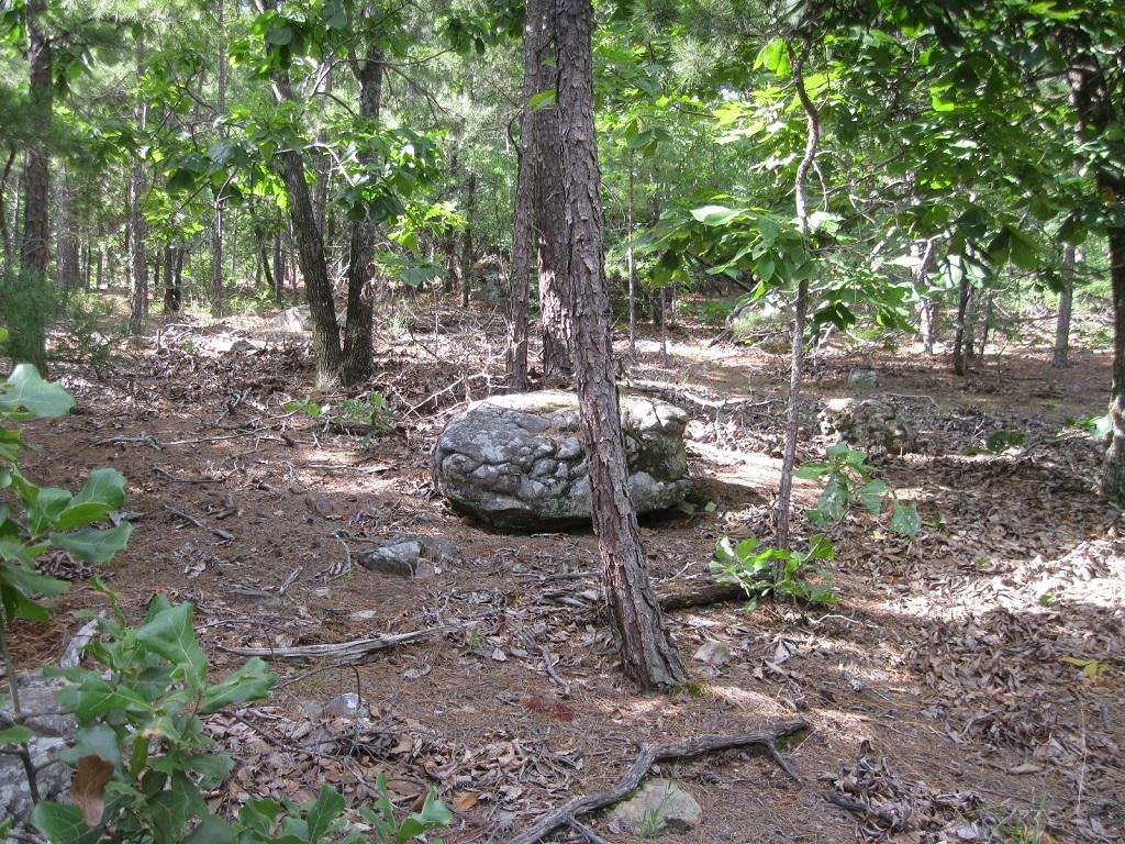 Pending | 80 Acres Remote Hunter's Paradise Clayton, OK 74536 1