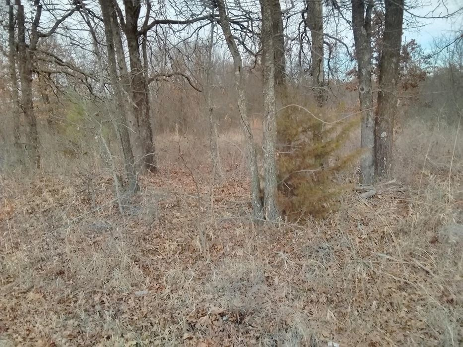 | New Price! Talihina, OK 74571 6