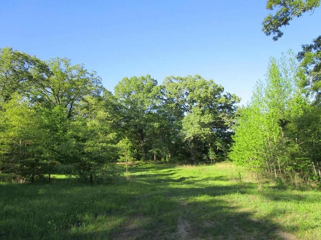 Sold Property | Little River Frontage Nashoba, OK 74558 11