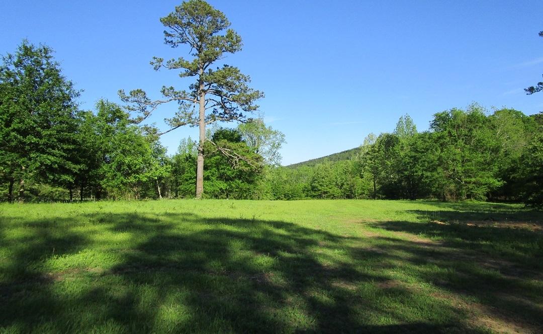 Sold Property | Little River Frontage Nashoba, OK 74558 6
