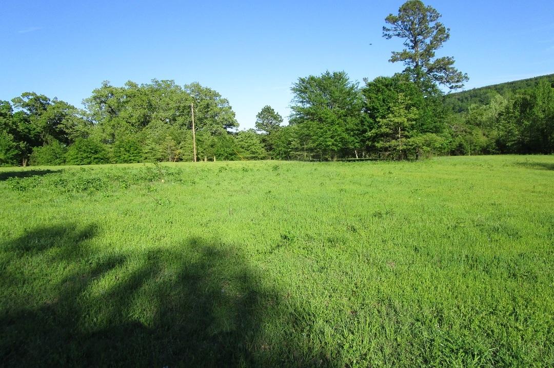 Sold Property | Little River Frontage Nashoba, OK 74558 9