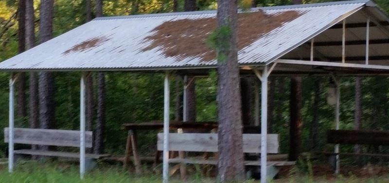 Pending | Cabin On 10 Acres Hodgen, OK 74939 2