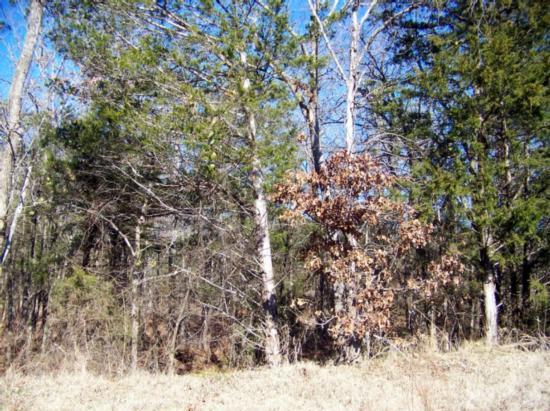 Active | Rustic Hills Subdivision Talihina, OK 74571 4