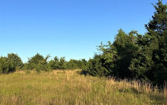 | Build Your Dream Home On 5 Wooded Acres At Blackberry Camp! Coleman, OK  0