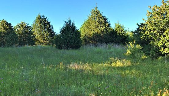 Land for Sale Coleman, OK | 9250 S Eli Road Coleman, OK 73432 6