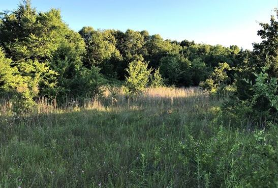 Land for Sale Coleman, OK | 9250 S Eli Road Coleman, OK 73432 1