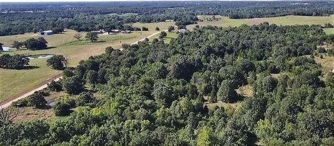 Land for sale in Coleman, OK | 9200 S Eli Road Coleman, OK 73432 2