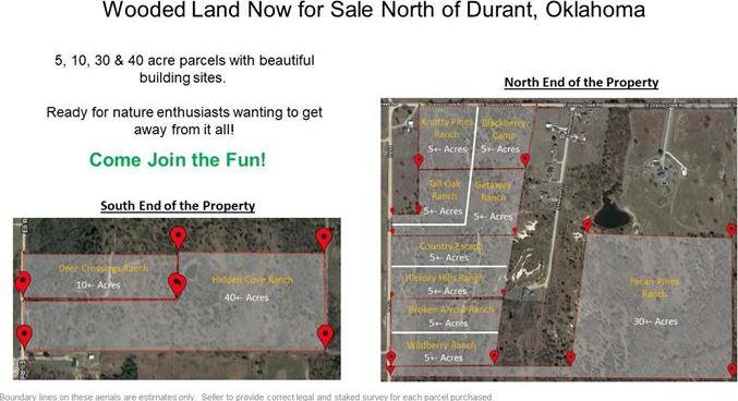 Land for sale in Coleman, OK | 9200 S Eli Road Coleman, OK 73432 8