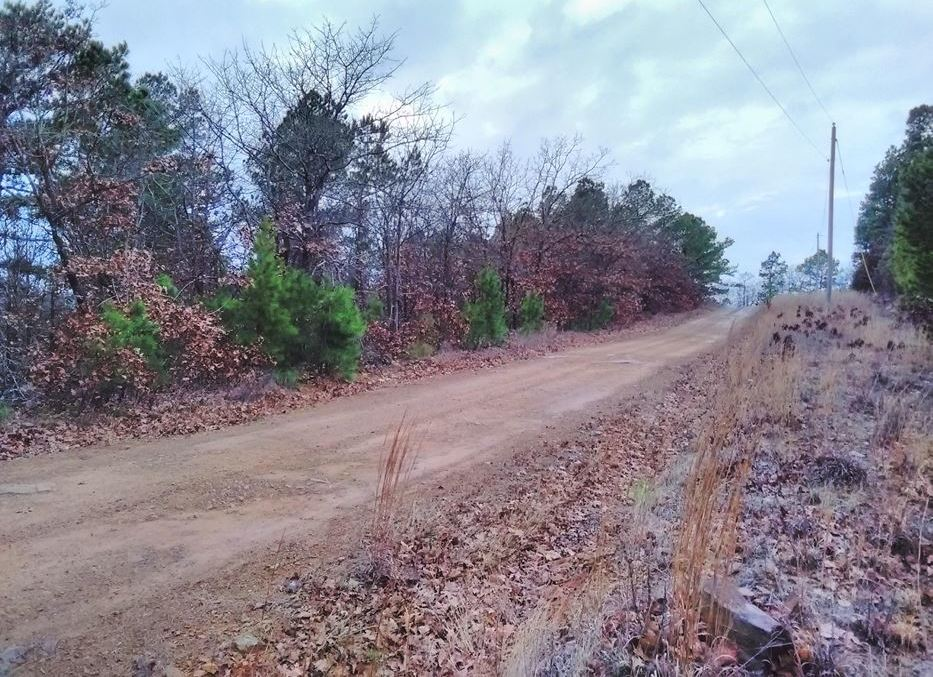 Pending | 5 Acre Homesite Canyon View Estates Talihina, OK 74571 1