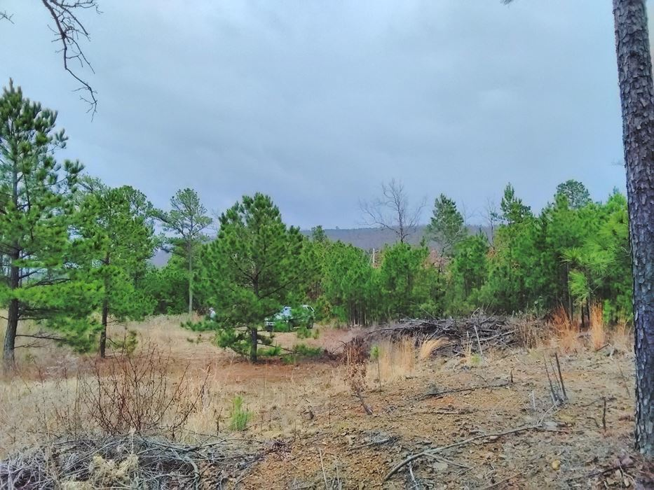 Pending | 5 Acre Homesite Canyon View Estates Talihina, OK 74571 2