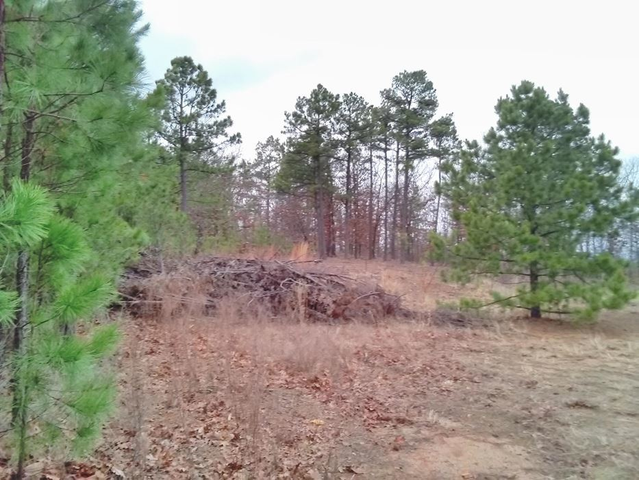 Pending | 5 Acre Homesite Canyon View Estates Talihina, OK 74571 6
