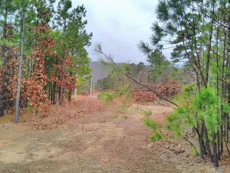 Pending | 5 Acre Homesite Canyon View Estates Talihina, OK 74571 9
