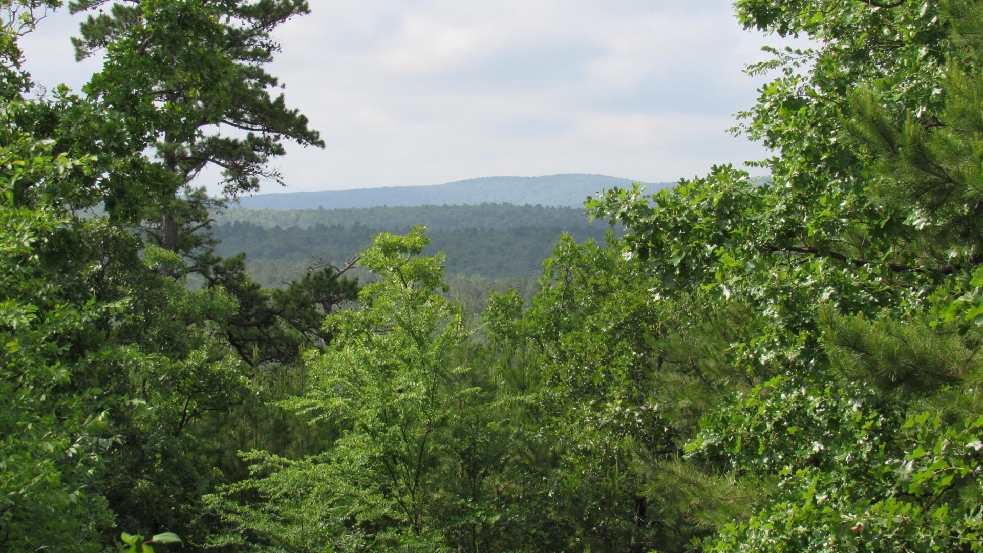 Mountain View  | Panoramic Mountain Views Le Flore, OK  16