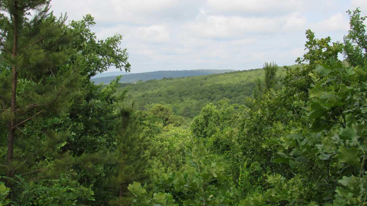 Mountain View  | Panoramic Mountain Views Le Flore, OK  3