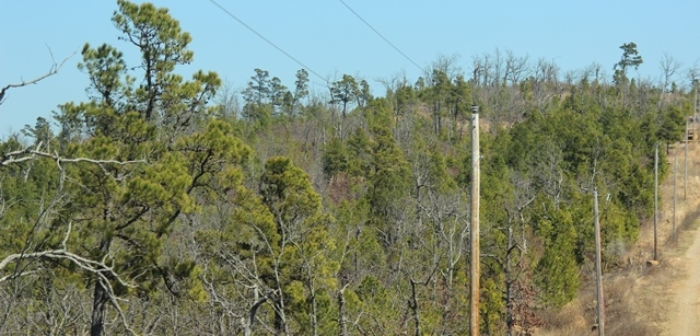 | Saddle Gap Ranch Estates Tuskahoma, OK 74574 11